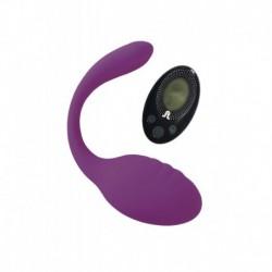 Smart Dream II Oeuf Avec Télécommande Usb